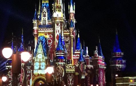 Disney World's New Theme Park
