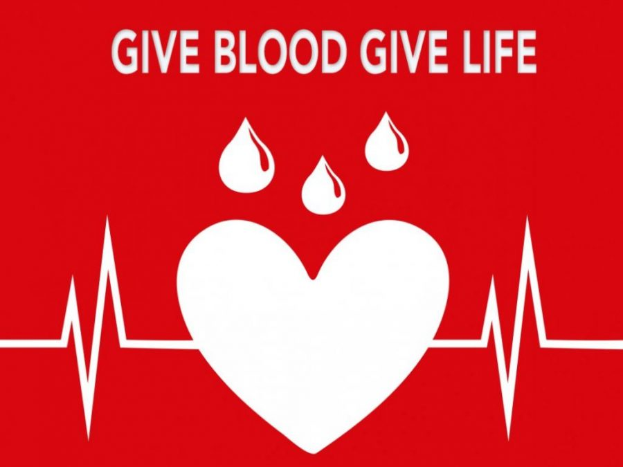 Why+Should+I+Donate+Blood%3F